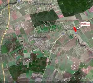 Land for sale: Dascalu